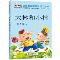 大林和小林 读书熊系列―注音版儿童文学名家名作