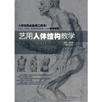 艺用人体结构教学