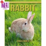 【中商海外直订】Rabbit: Amazing Fun Facts and Pictures about Rabbit