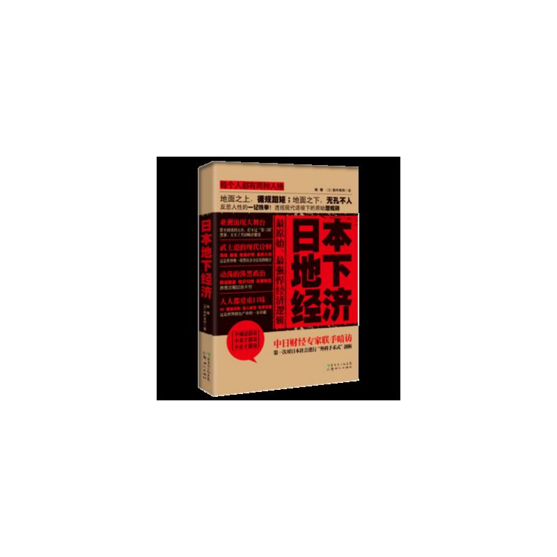 日本地下经济 姚耀,(日)秋叶良和 新世纪出版社 【正版书籍 闪电发货 新华书店】
