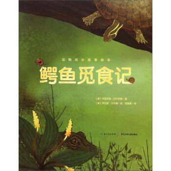 动物成长故事绘本:鳄鱼觅食记 [美] 玛芮安妮·贝尔克斯,[美] 罗伯塔·贝尔德 绘,范 长江少年儿童出版社9787556018987 【正版图书 闪电发货】