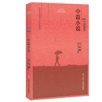 2011中国最佳中篇小说