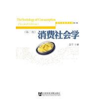 消费社会学(第二版) 王宁 社会科学文献出版社