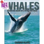 【中商海外直订】Childrens Book: Amazing Facts & Pictures about Whal