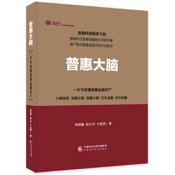 普惠大脑(精)一本书读懂普惠金融资产