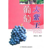 ZJ-大紫王葡萄 中国农业出版社 9787109145344