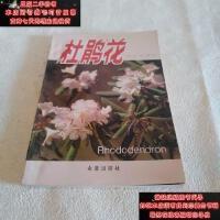 【二手旧书9成新】杜鹃花9787800225475