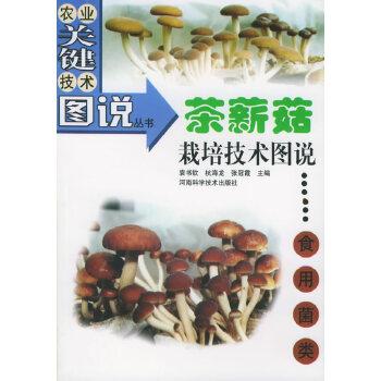 茶薪菇栽培技术图说——农业关键技术图说丛书·食用菌类