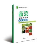 蔬菜病虫害诊断与防治图谱