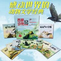 西顿动物记故事绘本全套10册礼盒装 小果树彩绘版 3-6-9-12岁儿童早教阅读 经典睡前故事书 感动世界的动物文学经