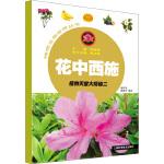 花中西施――植物天堂大揭秘二