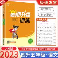 暑期升级训练四年级语文部编人教版2021新版