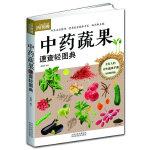 中药蔬果速查轻图典(巧用家庭蔬果养生,打造健康生活)