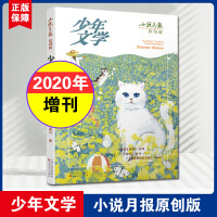 小说月报原创版少年文学2020年增刊 西班牙爸爸/白白/蓝百阳的石头城长篇小说杂志青少年课外阅读文学书期刊非2021