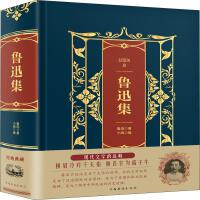 鲁迅集 中国华侨出版社