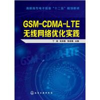 GSM-CDMA-LTE无线网络优化实践(丁远) 丁远,花苏荣,张远海 化学工业出版社【新华书店 品质保证】