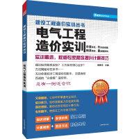建设工程造价实训丛书----电气工程造价实训(专家解惑,随时帮你解决造价难题)