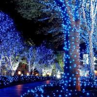 led小彩灯闪灯串灯满天星灯室外防水七彩圣诞节装饰树灯霓虹 灯串