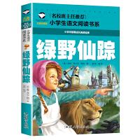 绿野仙踪 彩图注音版 小学生一二三年级5-6-7-8岁语文课外必读世界经典儿童文学名著童话故事书