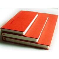 前通笔记本 B5笔记本 记事本 笔记本 皮革日记本 DG45