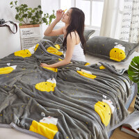 言标 夏季毯子珊瑚法兰绒毛毯加厚床单单人薄款空调午睡毛巾夏凉被子