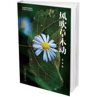 风吹草木动 北京大学出版社