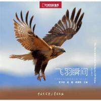 【二手书9成新】 中国国家地理野生鸟类摄影大赛:飞羽瞬间(第二卷) 张书清,赵超,种瑞娟 9787500085911