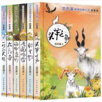 正版 沈石溪激情动物小说拼音版 6册 老虎哈雷+头羊之争+和平豹+太阳鸟+一对白天鹅+母牛蓝铃