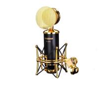 得胜(TAKSTAR)PC-K820 电容麦克风电脑K歌录音专用旁述式大振膜话筒