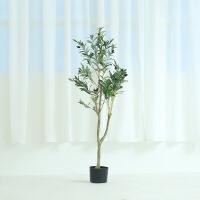 ins北欧仿真绿植橄榄树盆栽大树植物家居办公橱窗装饰摆件