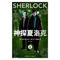 神探夏洛克.2(电子书)