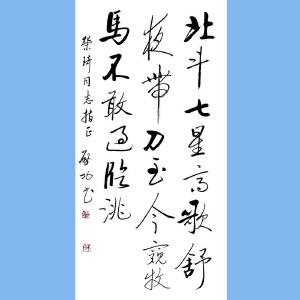 中国当代著名书画家,教育家,鉴定家,红学家启功(北斗七星高)