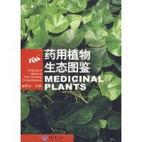 药用植物生态图鉴(好奇心书系)