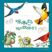 听大自然讲故事:啄木鸟和他的伙伴们 黛安彭斯、梅尔博林、克里斯汀孔普蒂比茨/著 长江少年儿童出版社