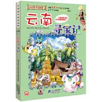 大中华寻宝系列13 云南寻宝记 孙家裕 二十一世纪出版社
