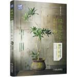 绿植之美:80种文艺感观叶植物挑选 装饰 养护