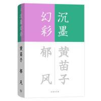 沉墨幻彩(流金文丛)