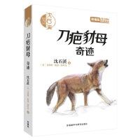 沈石溪和他喜欢的动物小说:刀疤豺母.奇迹(音频讲播版)
