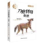 沈石溪和他喜欢的动物小说:刀疤豺母.奇迹
