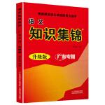 小学语文知识集锦广东专用升级版快速提高语文成绩的得力助手