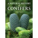 【预订】A Natural History of Conifers
