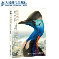 鸟类图谱大师笔下的飞羽世界经典画作世界大师界鸟类学艺术藏品经典名作对迷人鸟类世界的艺术诠释 卡特里娜.库克 人民邮电出版