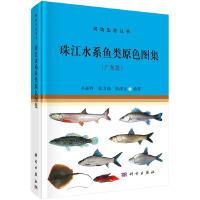 珠江水系鱼类原色图集(广东段)