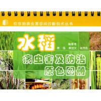 水稻病虫害及防治原色图册 傅强,黄世文,谢茂成著 金盾出版社