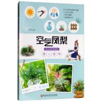空气凤梨:无土也可养活的懒人植物 王伟 黑龙江科学技术出版社
