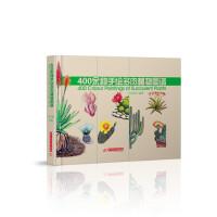 400余种手绘多肉植物图谱
