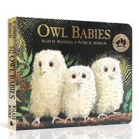 【全店300减80】进口英文原版猫头鹰宝宝Owl babies BB