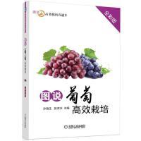 图说葡萄高效栽培(全彩版)