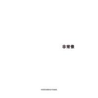 第五届中国济南国际摄影双年展学术成果-非常像