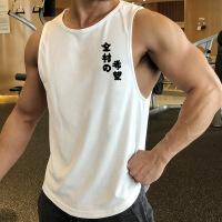 夏季健身运动坎肩大码宽松透气青年跨栏潮流无袖宽肩男士背心潮牌